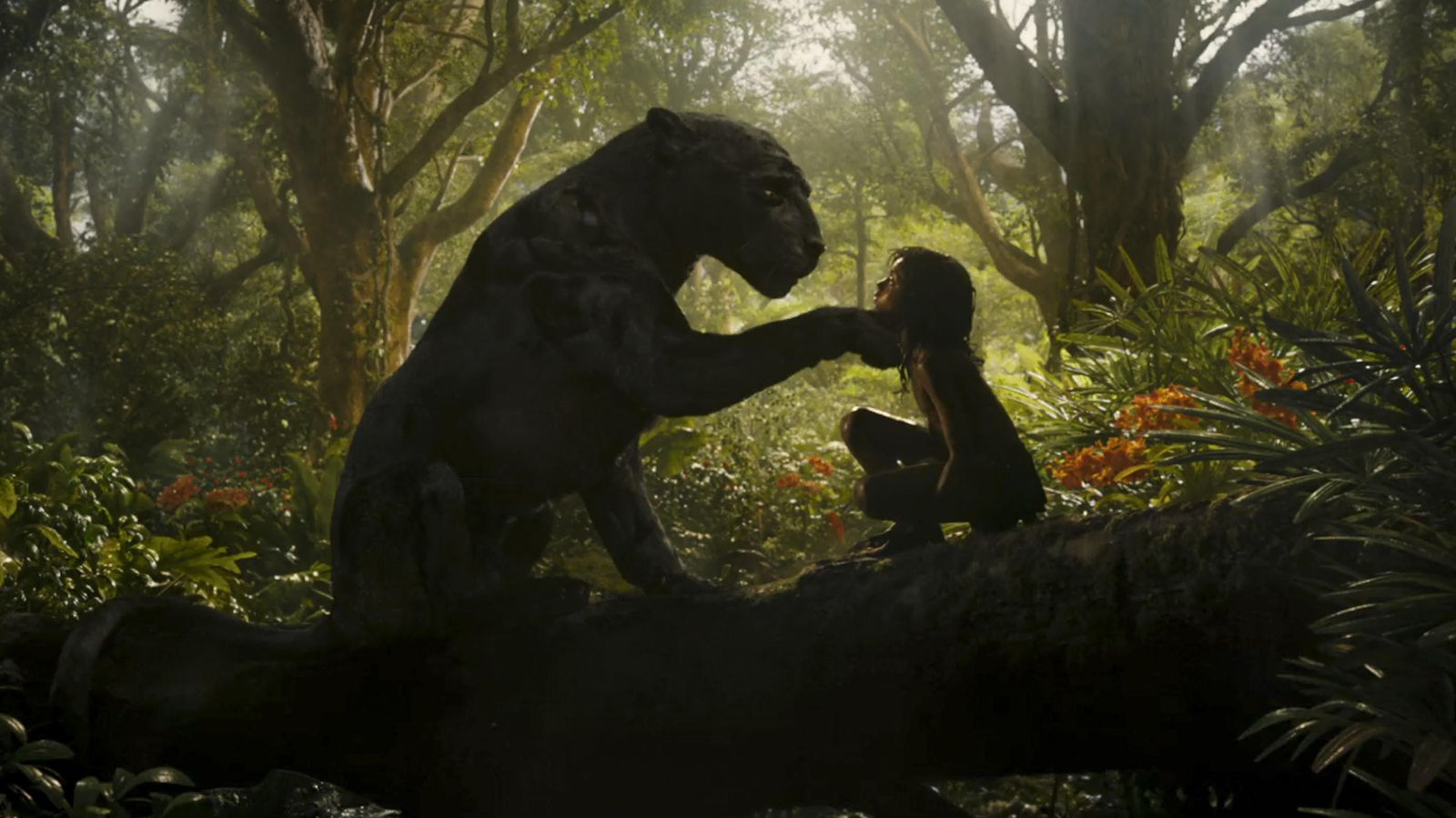 mowgli-andy-serkis-netflix-16.jpg